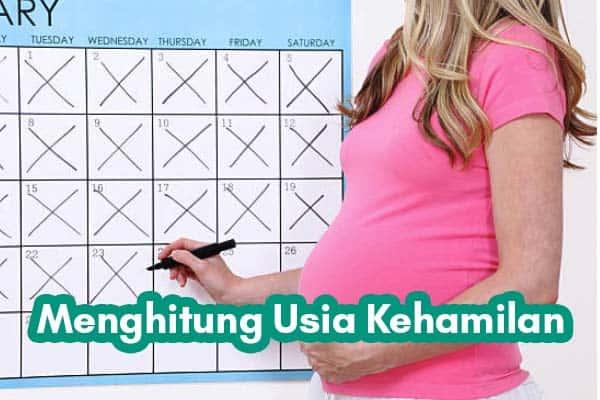 Menggunakan hitungan kalender