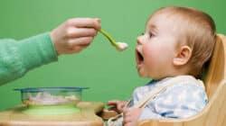 Makanan Bayi Usia 6-12 Bulan